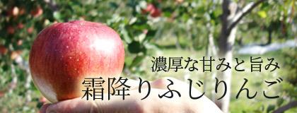 濃厚な甘みと旨み 霜降りふじりんご