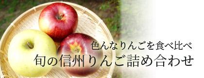 色んなりんごを食べ比べ 旬の信州りんご詰め合わせ