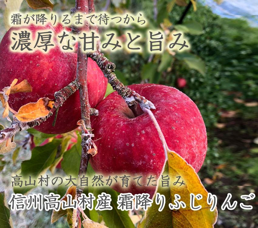 霜が降りるまで待つから濃厚な甘みと旨み 信州高山村産霜降りふじりんご