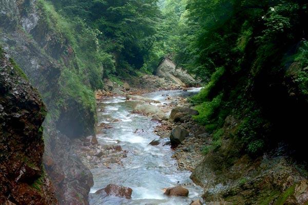 信州高山村の松川渓谷
