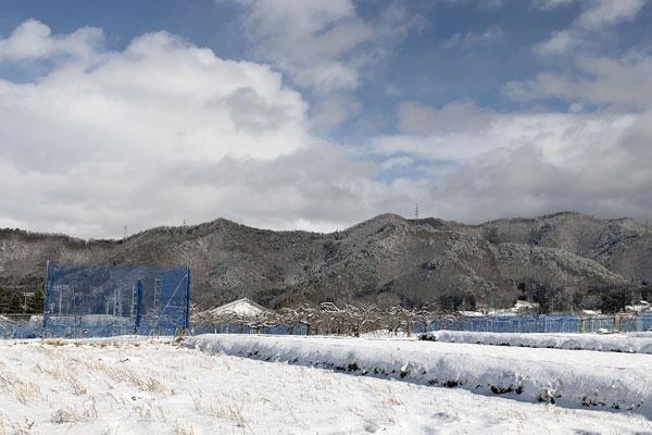 雪が積もった信州高山村の山々