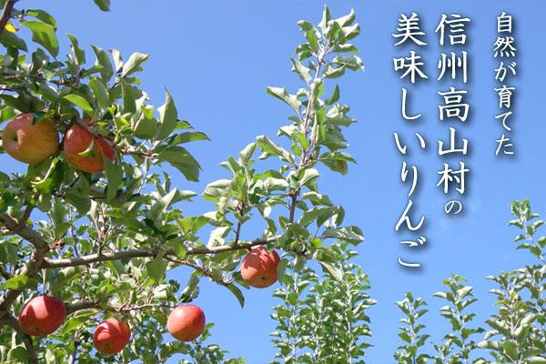 自然が育てた、信州高山村の美味しいりんご