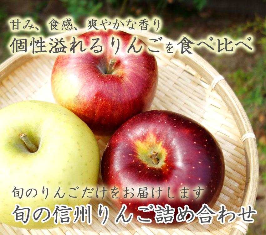 甘み、食感、爽やかな香り 個性溢れるりんごを食べ比べ 旬の信州りんご詰め合わせ